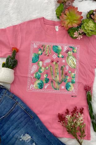 LF cactus banda